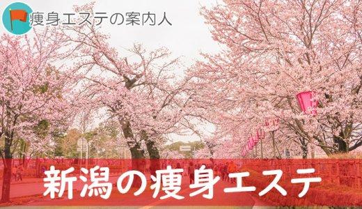 新潟県にある口コミ評判が良いオススメ痩身エステランキング